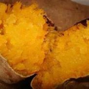 河南河北山东地瓜红薯图片