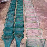 供应中国广东最专业的虾笼生产厂家