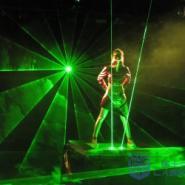 供应上海绿色动画激光灯商家销售租赁、