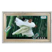 哈尔滨数码相框代售图片