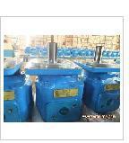 YB1-20定量叶片泵武汉凯欣液压专业图片