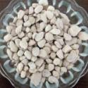 首选沸石滤料图片