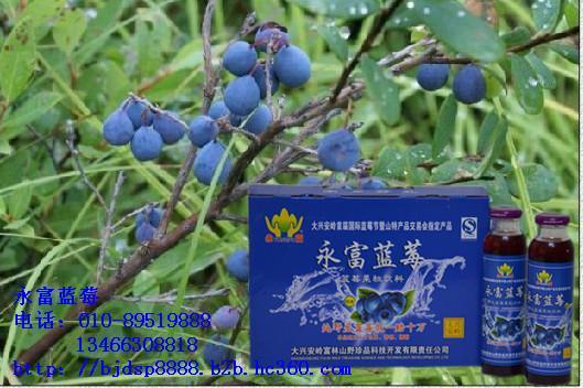 供应改善视力蓝莓果汁帮你