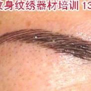 火凤凰纹身纹绣双眼皮器材培训图片