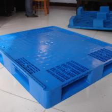 供应呼伦贝尔塑料托盘,呼伦贝尔托盘厂家直销批发