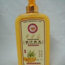 洗发水批发 化妆品批发 同仁堂老姜王姜汁热疗洗发水1000毫升