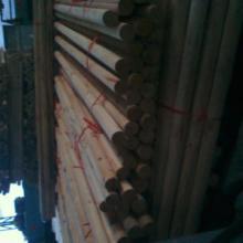 供应绿化苗木支撑杆
