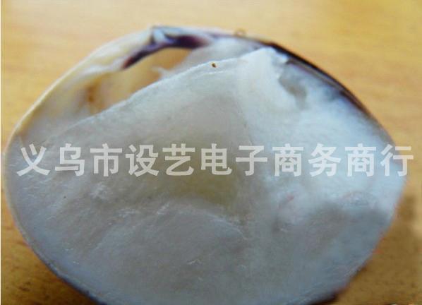 上海/供应冬季地摊热销产品/哈利油/蛤蜊油图片