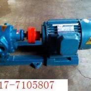 高温齿轮泵图片