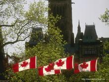 供应加拿大留学签证材料及留学费用
