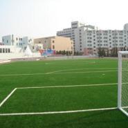 业铺装塑胶篮球场人造草足球场图片
