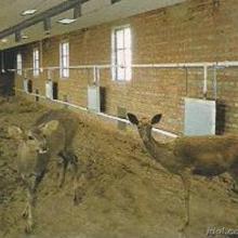 供应特种动物养殖锅炉首选振华