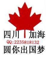 招赴加拿大服装设计师 永久签证