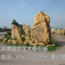 供应黄蜡石,蜡石,园林石,景观石,风景石,观赏石批发