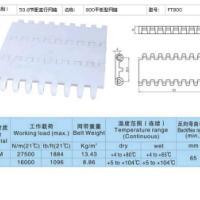 供应800平板型模块塑料网带/全国热销中