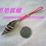 贝壳艺术饰品绿花贝海螺贝壳饰品图片