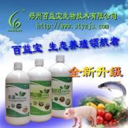 综合EM菌液EM菌种给牛饮用图片