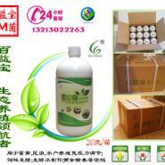 发酵床专用菌图片