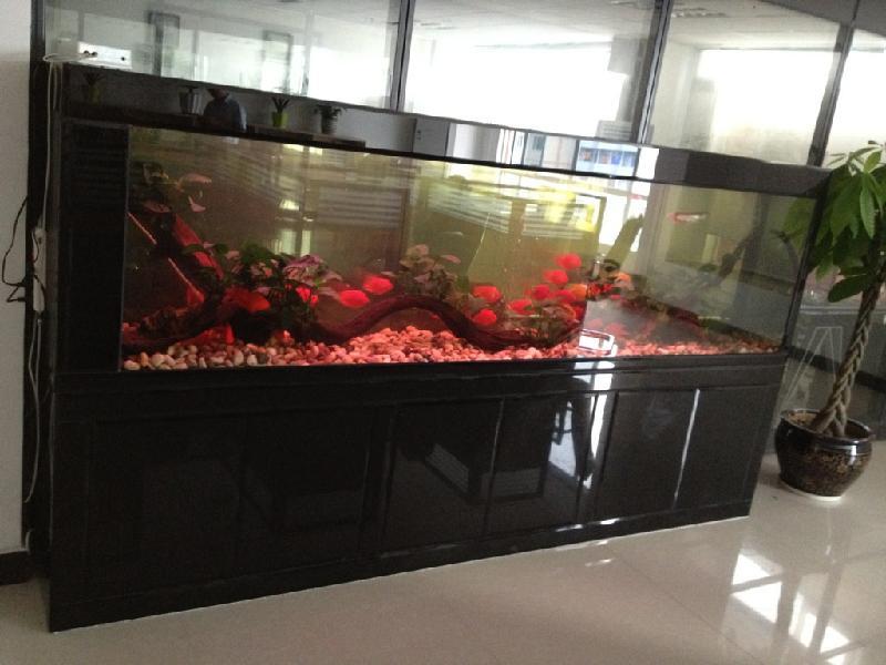 图片 鱼缸样板图 广州鱼缸造景广州鱼缸布景 广 高清图片