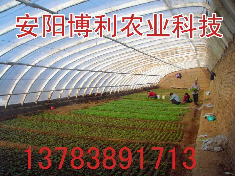 供应无机复合材料蔬菜大棚
