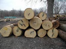 东莞木材进口报关代理图片