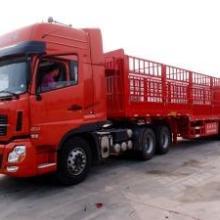 供应杭州专业回程车信息服务,杭州回程车调度电话,批发