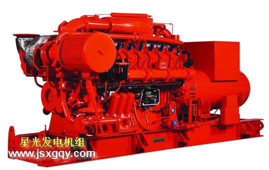 供应燃气发电机