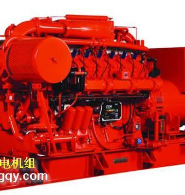 燃气发电机图片/燃气发电机样板图 (1)