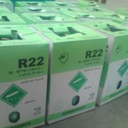 R22图片