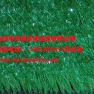供应重庆塑料假草哪里有卖,四川安顺哪里有厂家批发人造草坪?,重庆地产围墙广告装饰草坪厂家