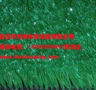 重庆合川区人造草坪厂家低价直销图片