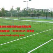 重庆哪里有厂家卖人造草坪图片