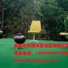 重庆渝中区人造草坪厂家销售,贵州哪里有便宜塑料假草坪?四川幼儿园人造草坪批发价批发