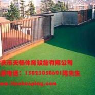 重庆塑料人造草坪图片