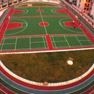 重庆学校专用塑胶跑道厂家图片