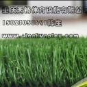 重庆房地产围墙专用装饰草坪图片