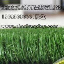 供应重庆南岸哪里有卖人造草坪,四川遂宁楼顶绿化人造草坪,贵州省便宜草坪厂家批发