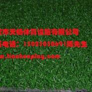 重庆南川人造草坪厂家价格图片