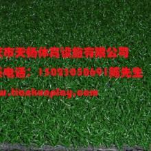 供应重庆人造草坪厂商直供,四川哪里批发幼儿园塑料人造草坪厂家,重庆生产防真塑料人造草坪低价批发批发