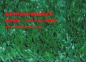 供应重庆荣昌人造草坪铺设施工,贵州哪里有卖围墙绿化塑料人造草皮?四川乐山楼顶绿化人造塑料草坪销售基地