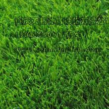 供应重庆铜梁人造草坪生产厂家,重庆塑料人造草坪价格,重庆生产人造草坪联系方式,四川幼儿园人造草坪供应商图片