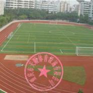 重庆篮球场施工价格图片