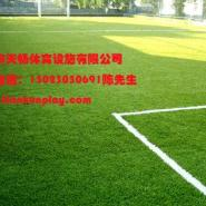 重庆塑料人造草丝厂家图片