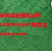 重庆渝北塑料人造草坪哪里卖图片