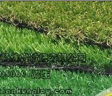 重庆塑料草坪生产厂家电话,贵州幼儿园塑料草坪,重庆人造草厂家总批发中心批发
