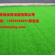 重庆塑料人造草丝图片