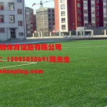 供应重庆人造草坪采购销售厂家,成都楼顶绿化人造草坪,贵州贵州兴义幼儿园塑料草坪总销售点批发