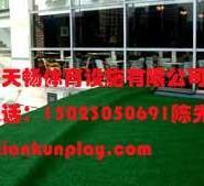 重庆九龙坡区哪里卖塑料人造草坪?图片