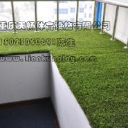 重庆人造草坪出售图片