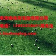 重庆塑料假草坪报价图片